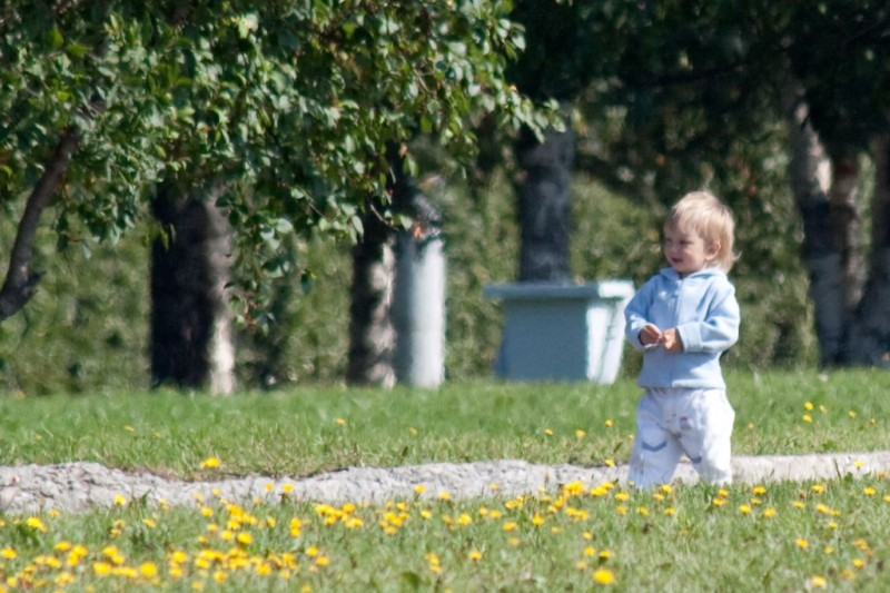 The child on a clearing with dandelions